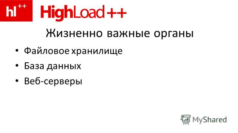 Жизненно важные органы Файловое хранилище База данных Веб-серверы