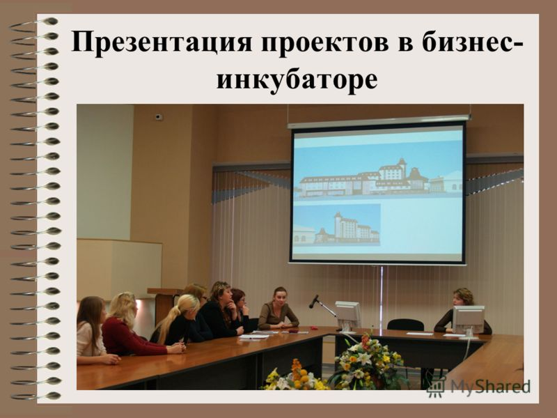 Презентация проектов в бизнес- инкубаторе