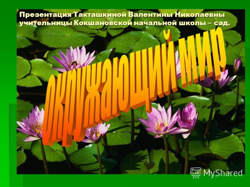 Урок - презентация Презентация Такташкиной Валентины Николаевны учительницы Кокшановской начальной школы – сад.