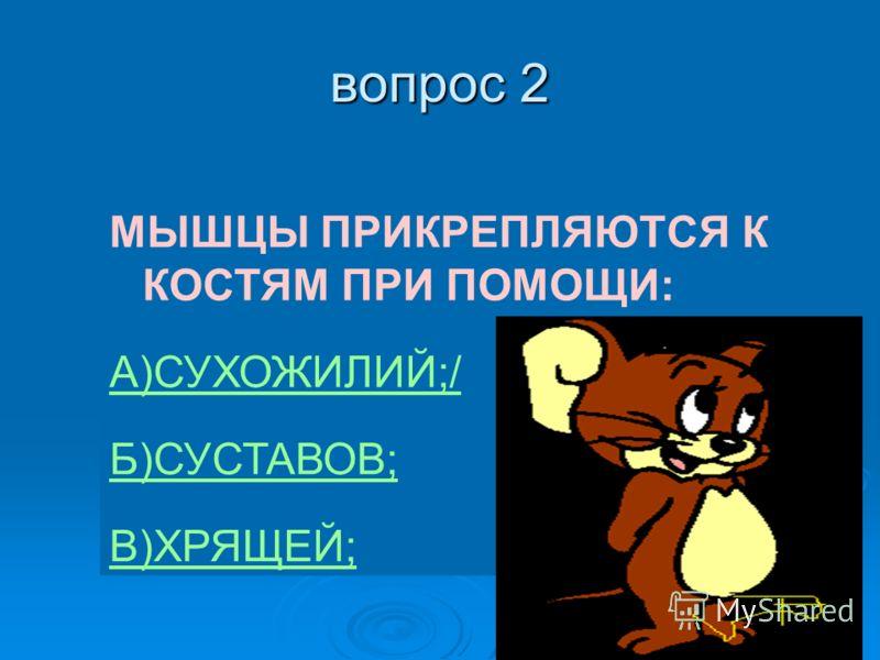 вопрос 2 МЫШЦЫ ПРИКРЕПЛЯЮТСЯ К КОСТЯМ ПРИ ПОМОЩИ: А)СУХОЖИЛИЙ;/ Б)СУСТАВОВ; В)ХРЯЩЕЙ;