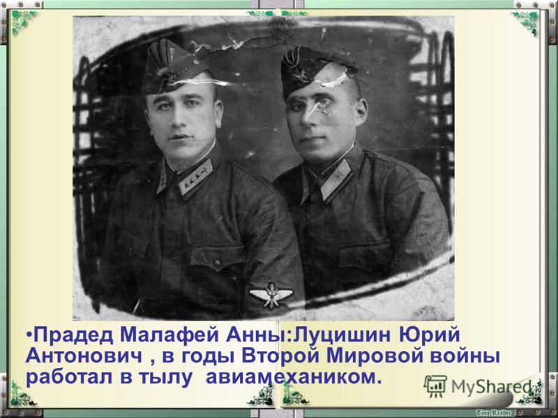 Прадед Малафей Анны:Луцишин Юрий Антонович, в годы Второй Мировой войны работал в тылу авиамехаником.