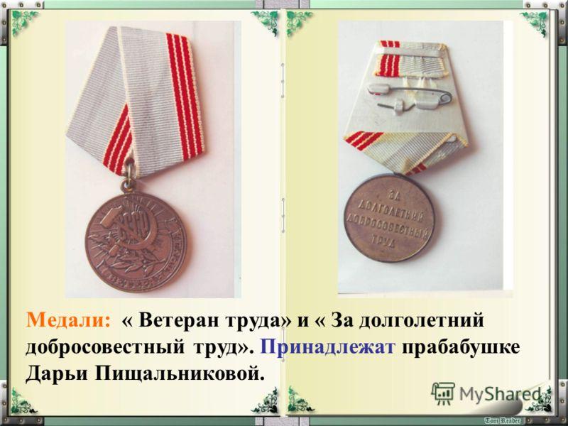 Медали: « Ветеран труда» и « За долголетний добросовестный труд». Принадлежат прабабушке Дарьи Пищальниковой.