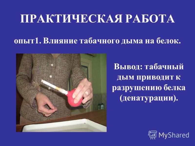 опыт1. Влияние табачного дыма на белок. Вывод: табачный дым приводит к разрушению белка (денатурации).