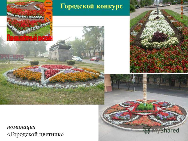 номинация «Городской цветник»