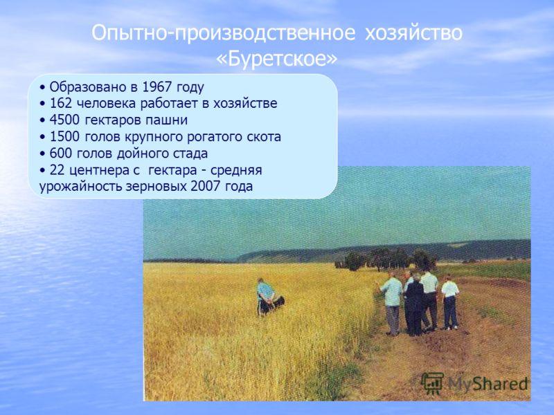 Опытно-производственное хозяйство «Буретское» Образовано в 1967 году 162 человека работает в хозяйстве 4500 гектаров пашни 1500 голов крупного рогатого скота 600 голов дойного стада 22 центнера с гектара - средняя урожайность зерновых 2007 года