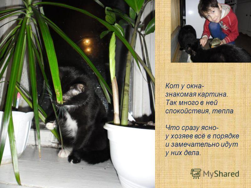 Я люблю котов и кошек! И больших, и котокрошек! Чёрно-белых, полосатых, Гладко-шёрстных и лохматых! И сидящих, и прыгучих, Меланхоликов, ласкучих. Когда спят или едят, - Обожаю я котят!
