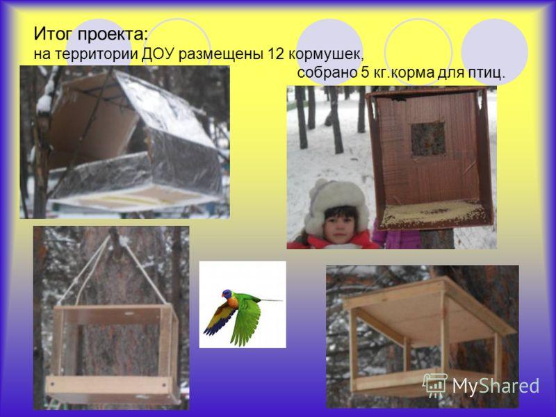 Итог проекта: на территории ДОУ размещены 12 кормушек, собрано 5 кг.корма для птиц.