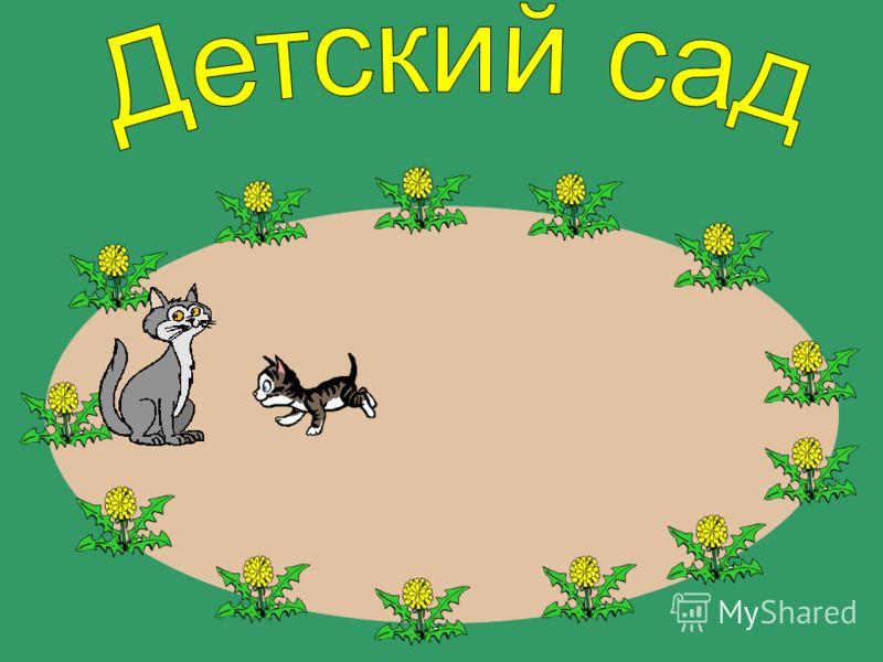 А кошка за котёнком.