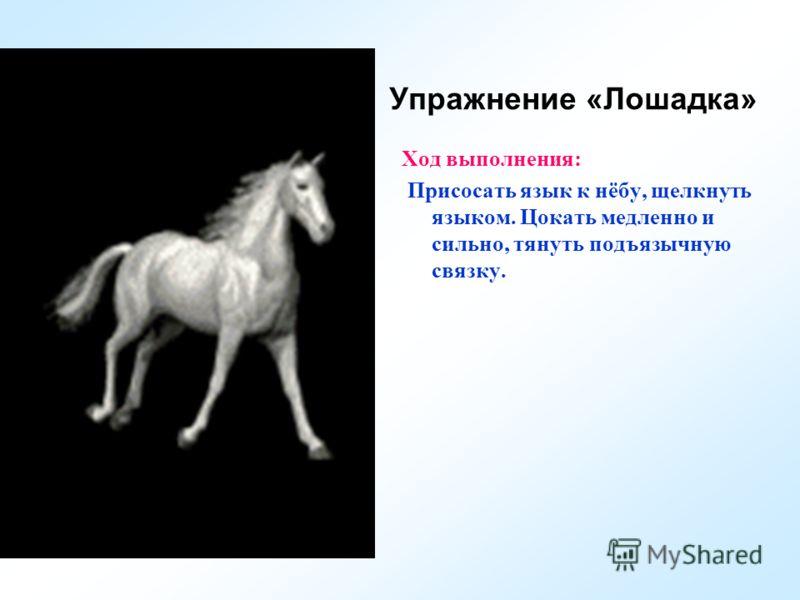 Упражнение «Лошадка» Ход выполнения: Присосать язык к нёбу, щелкнуть языком. Цокать медленно и сильно, тянуть подъязычную связку.