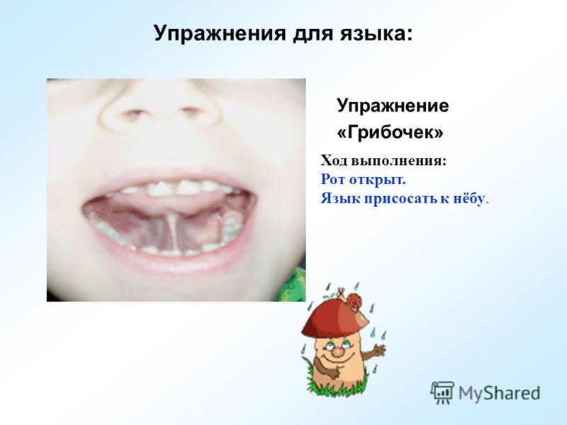 Упражнения для языка: Упражнение «Грибочек» Ход выполнения: Рот открыт. Язык присосать к нёбу.