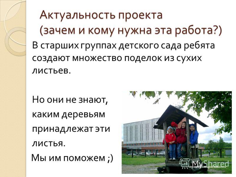 Актуальность проекта ( зачем и кому нужна эта работа ?) В старших группах детского сада ребята создают множество поделок из сухих листьев. Но они не знают, каким деревьям принадлежат эти листья. Мы им поможем ;) http://www.naukograd-koltsovo.ru