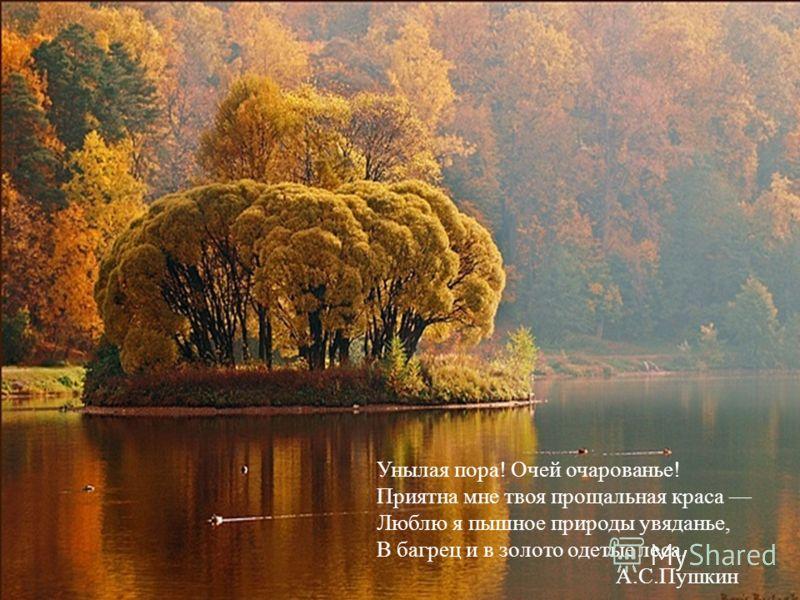 Счастливая пора очей очарованье стих