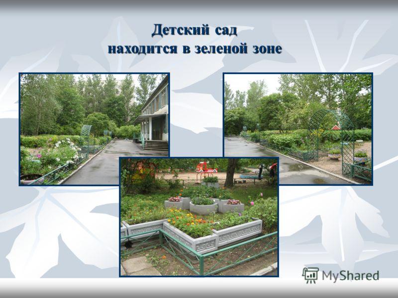 Детский сад находится в зеленой зоне