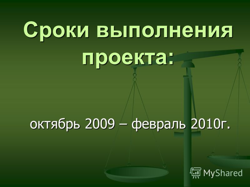 Сроки выполнения проекта: октябрь 2009 – февраль 2010г.