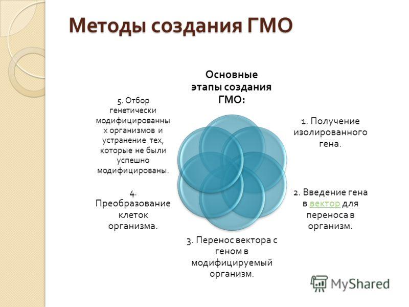 Методы создания ГМО Основные этапы создания ГМО : 1. Получение изолированного гена. 2. Введение гена в вектор для переноса в организм. вектор 3. Перенос вектора с геном в модифицируемый организм. 4. Преобразование клеток организма. 5. Отбор генетичес