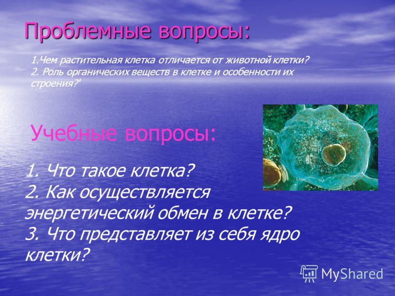 Проблемные вопросы: 1.Чем растительная клетка отличается от животной клетки? 2. Роль органических веществ в клетке и особенности их строения?' Учебные вопросы: 1. Что такое клетка? 2. Как осуществляется энергетический обмен в клетке? 3. Что представл