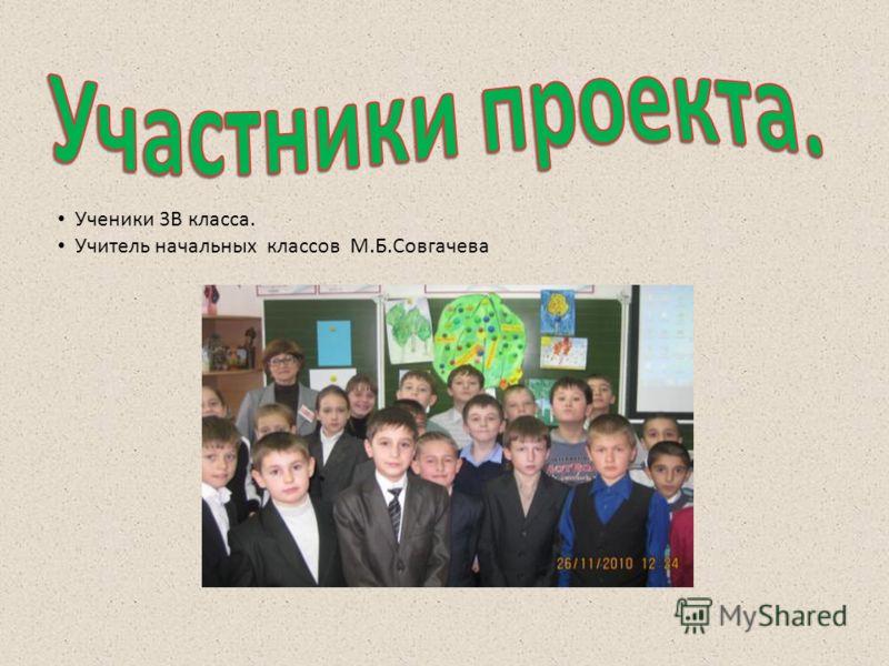 Ученики 3В класса. Учитель начальных классов М.Б.Совгачева
