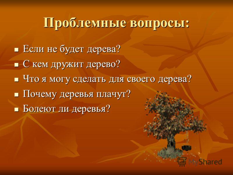 Проблемные вопросы: Если не будет дерева? Если не будет дерева? С кем дружит дерево? С кем дружит дерево? Что я могу сделать для своего дерева? Что я могу сделать для своего дерева? Почему деревья плачут? Почему деревья плачут? Болеют ли деревья? Бол