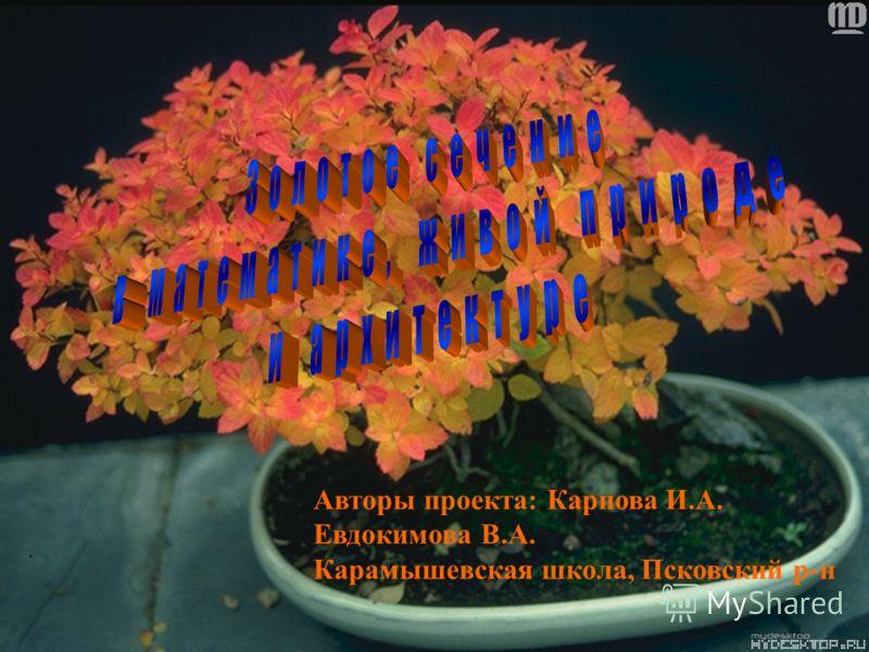 Авторы проекта: Карпова И.А. Евдокимова В.А. Карамышевская школа, Псковский р-н