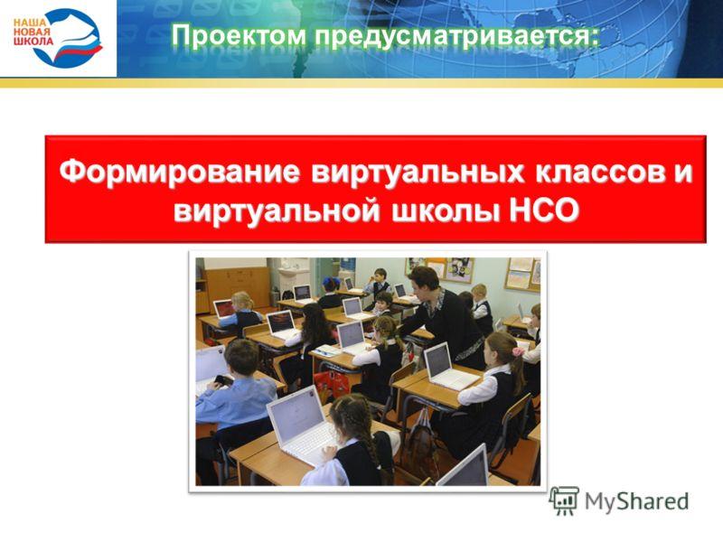 Формирование виртуальных классов и виртуальной школы НСО