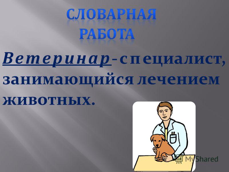 Ветеринар -специалист, занимающийся лечением животных. лечением животных.