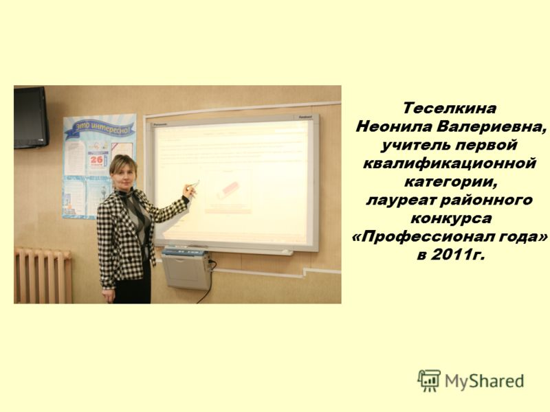 Теселкина Неонила Валериевна, учитель первой квалификационной категории, лауреат районного конкурса «Профессионал года» в 2011г.