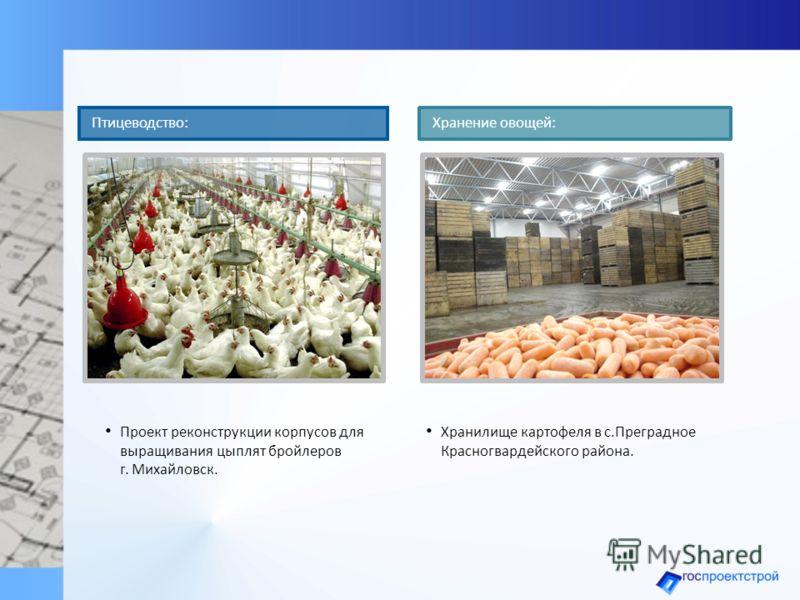 Проект реконструкции корпусов для выращивания цыплят бройлеров г. Михайловск. Птицеводство: Хранилище картофеля в с.Преградное Красногвардейского района. Хранение овощей: