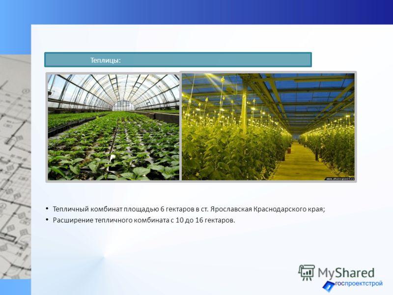 Тепличный комбинат площадью 6 гектаров в ст. Ярославская Краснодарского края; Расширение тепличного комбината с 10 до 16 гектаров. Теплицы: