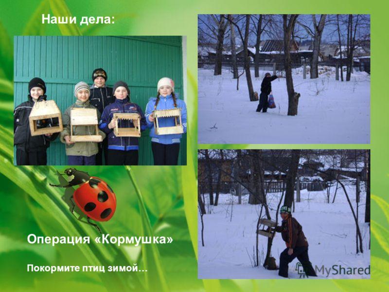 Наши дела: Операция «Кормушка» Покормите птиц зимой…