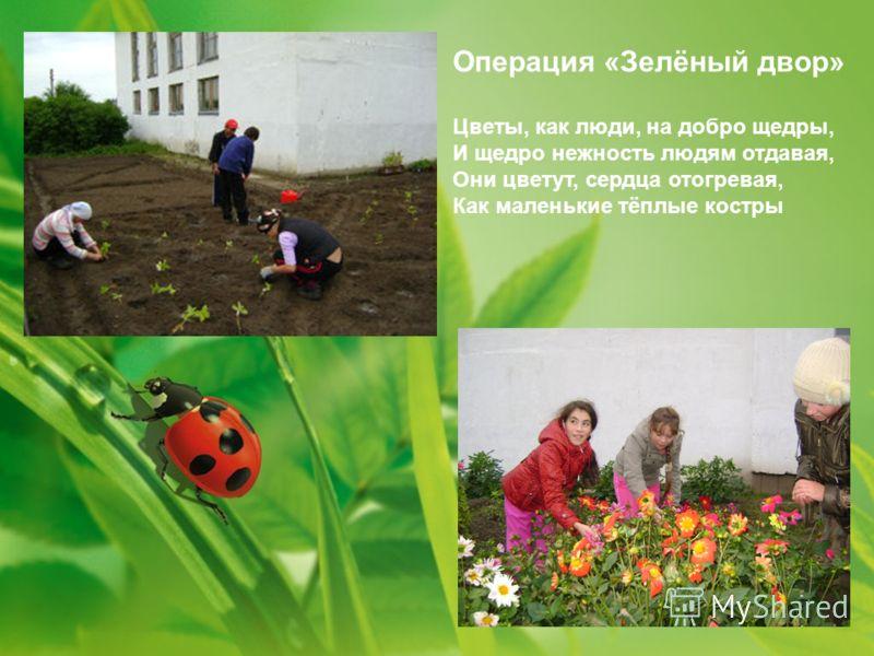 Операция «Зелёный двор» Цветы, как люди, на добро щедры, И щедро нежность людям отдавая, Они цветут, сердца отогревая, Как маленькие тёплые костры