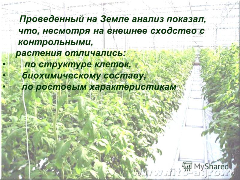 Проведенный на Земле анализ показал, что, несмотря на внешнее сходство с контрольными, растения отличались: по структуре клеток, биохимическому составу, по ростовым характеристикам