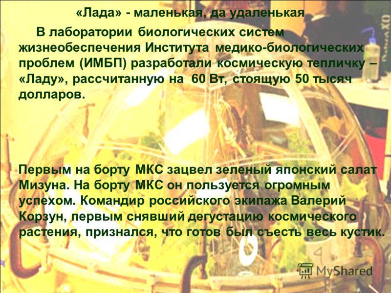 «Лада» - маленькая, да удаленькая В лаборатории биологических систем жизнеобеспечения Института медико-биологических проблем (ИМБП) разработали космическую тепличку – «Ладу», рассчитанную на 60 Вт, стоящую 50 тысяч долларов. Первым на борту МКС зацве