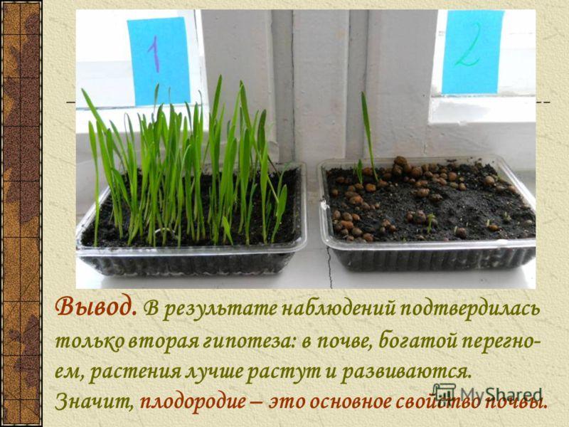 Вывод. В результате наблюдений подтвердилась только вторая гипотеза: в почве, богатой перегно- ем, растения лучше растут и развиваются. Значит, плодородие – это основное свойство почвы.