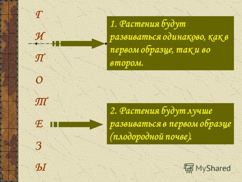 Г И П О Т Е З Ы 1. Растения будут развиваться одинаково, как в первом образце, так и во втором. 2. Растения будут лучше развиваться в первом образце (плодородной почве).