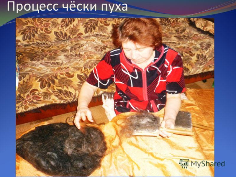 Процесс чёски пуха