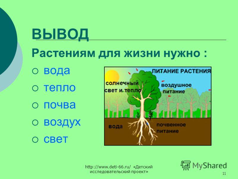 http://www.deti-66.ru/ «Детский исследовательский проект» 11 ВЫВОД Растениям для жизни нужно : вода тепло почва воздух свет солнечный свет и тепло вода