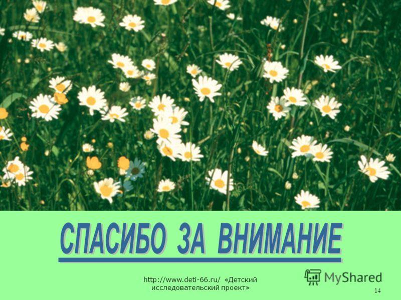 http://www.deti-66.ru/ «Детский исследовательский проект» 14