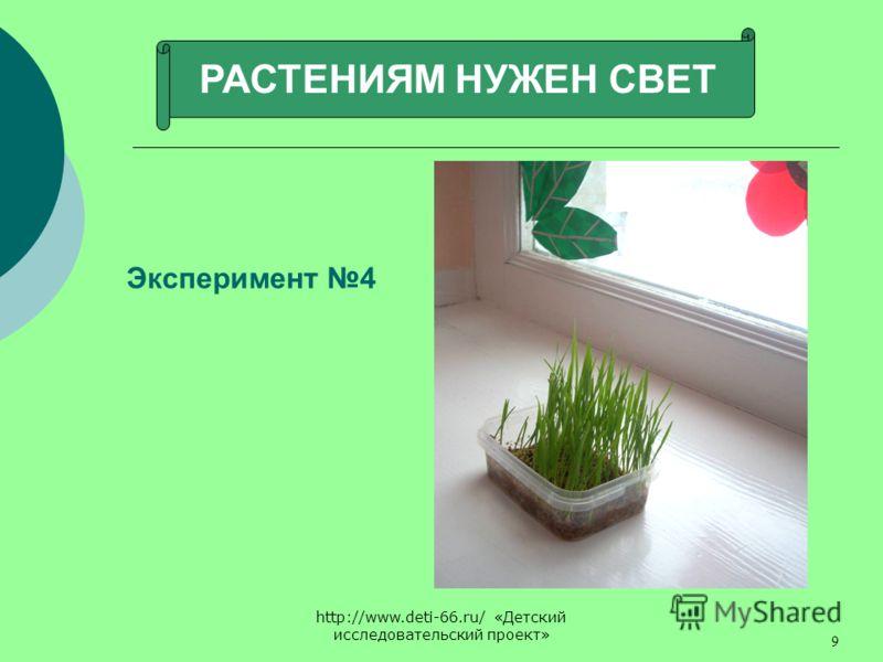 http://www.deti-66.ru/ «Детский исследовательский проект» 9 РАСТЕНИЯМ НУЖЕН СВЕТ Эксперимент 4