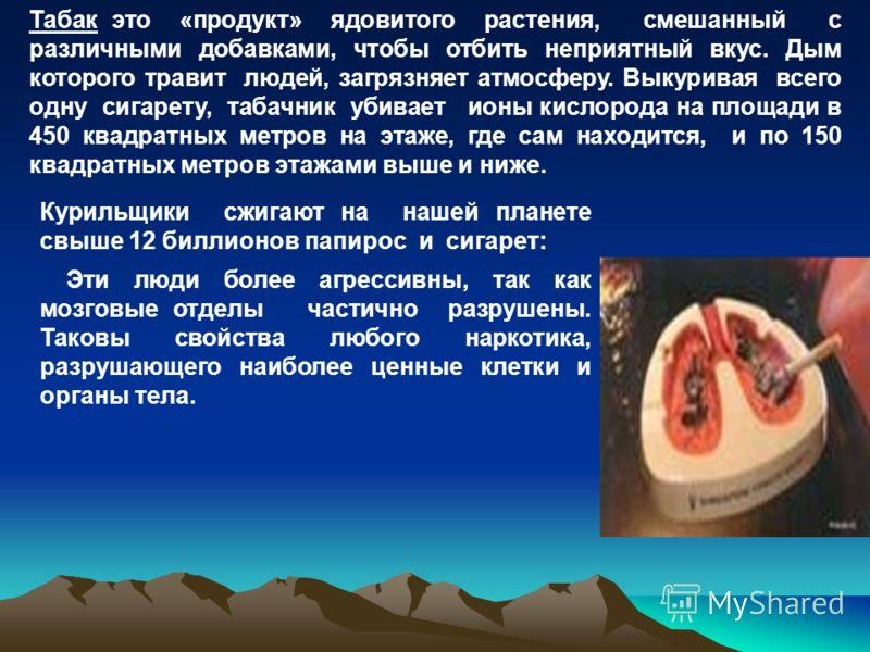 Курильщики сжигают на нашей планете свыше 12 биллионов папирос и сигарет: Эти люди более агрессивны, так как мозговые отделы частично разрушены. Таковы свойства любого наркотика, разрушающего наиболее ценные клетки и органы тела. Табак это «продукт»