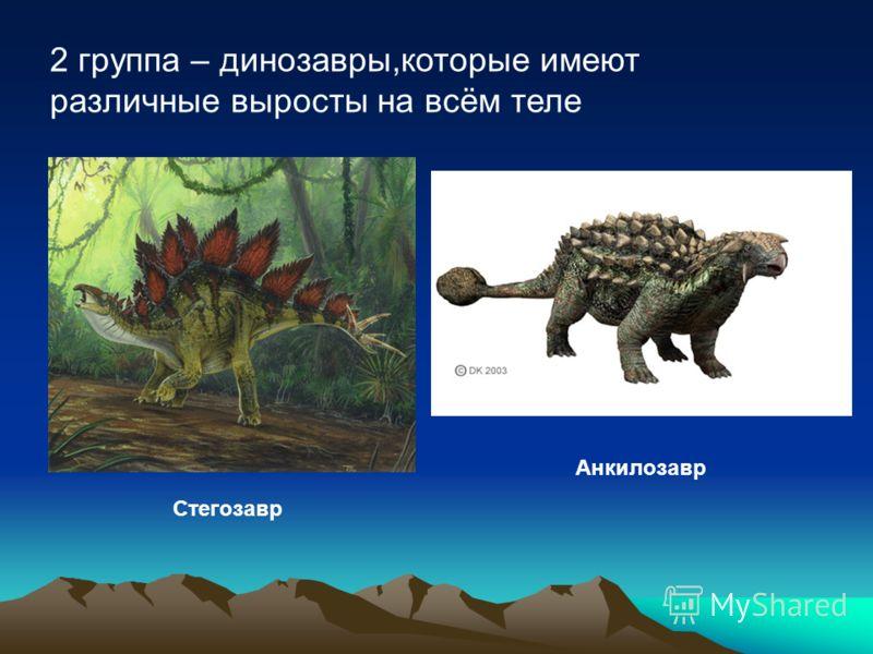 2 группа – динозавры,которые имеют различные выросты на всём теле Стегозавр Анкилозавр
