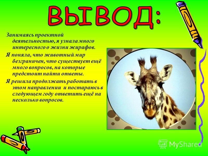 Занимаясь проектной деятельностью, я узнала много интересного о жизни жирафов. Я поняла, что животный мир безграничен, что существует ещё много вопросов, на которые предстоит найти ответы. Я решила продолжать работать в этом направлении и постараюсь