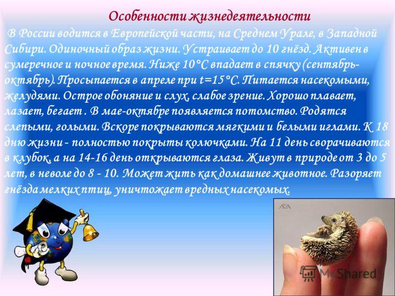 Особенности жизнедеятельности В России водится в Европейской части, на Среднем Урале, в Западной Сибири. Одиночный образ жизни. Устраивает до 10 гнёзд. Активен в сумеречное и ночное время. Ниже 10°C впадает в спячку (сентябрь- октябрь). Просыпается в