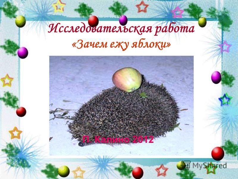 Исследовательская работа «Зачем ежу яблоки»