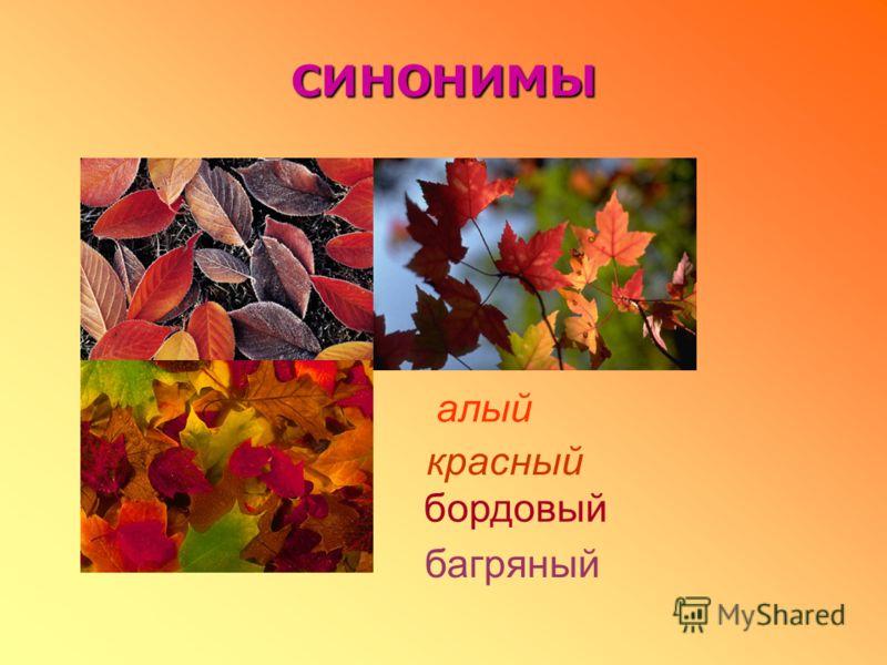 синонимы красный алый бордовый багряный