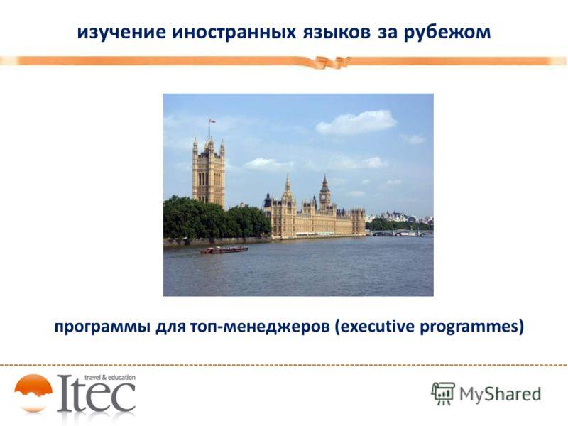 изучение иностранных языков за рубежом программы для топ-менеджеров (executive programmes)