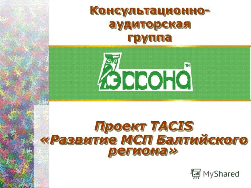 Консультационно- аудиторская группа Проект ТАСIS «Развитие МСП Балтийского региона» Проект ТАСIS «Развитие МСП Балтийского региона»