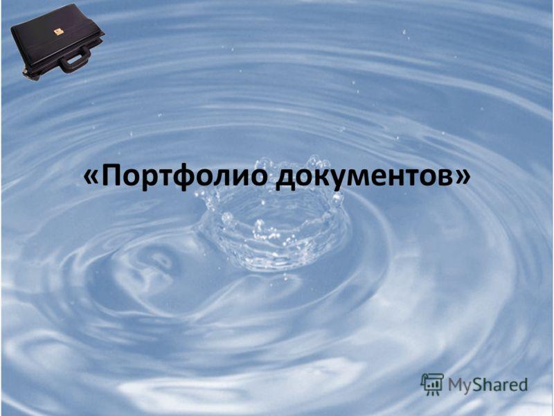 «Портфолио документов»