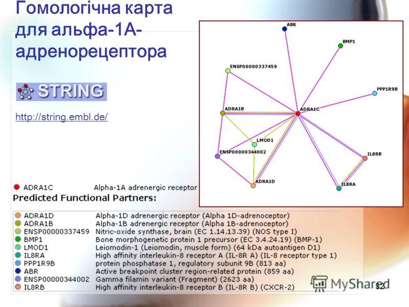 32 Гомологічна карта для альфа-1А- адренорецептора http://string.embl.de/