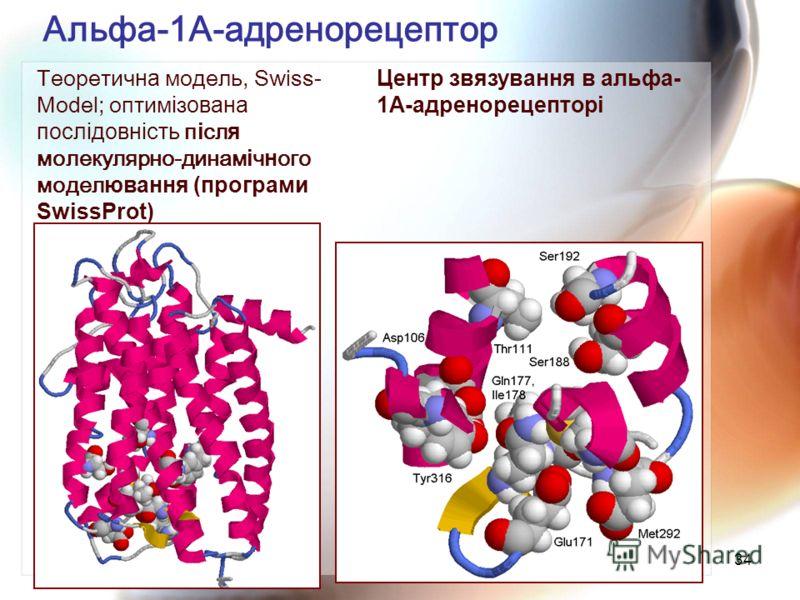 34 Альфа-1А-адренорецептор Теоретич на модель, Swiss- Model; оптим і з ована послідовність п і сл я молекулярно-динам і ч н ого модел ювання (програми SwissProt) Центр звязування в альфа- 1А-адренорецепторі