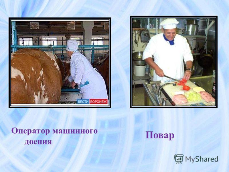 Оператор машинного доения повар